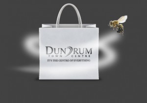 Dundrum Case Study