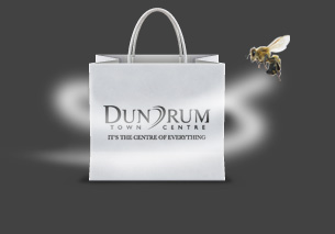 Dundrum Case Study